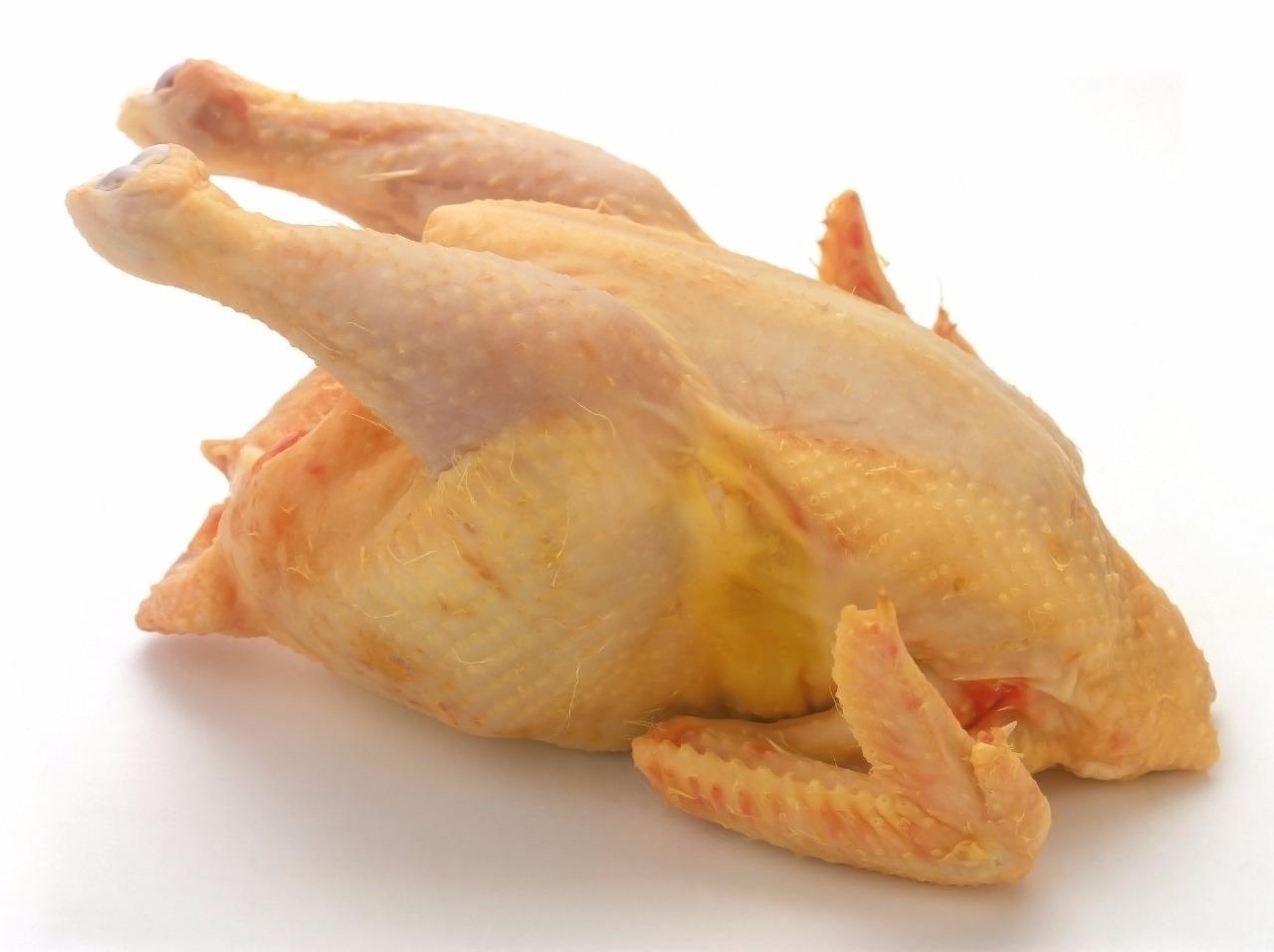 Hard chicken