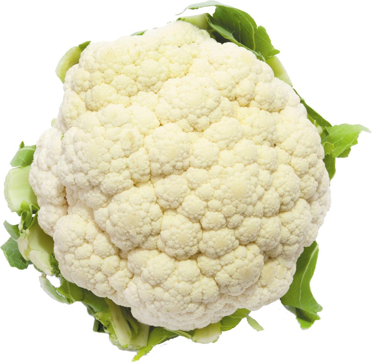 Head of fresh cauliflower on a white background.