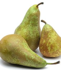 Confrence Pear