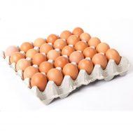 Eggs 30s p/p